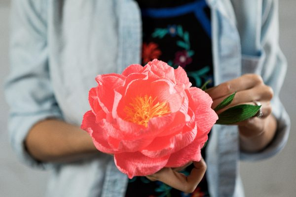 Intro to Paper Flower Making